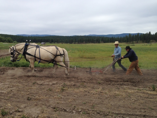 Stacy handling plow while Doc drives Fjord